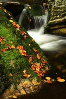 Free Autumn Stream In Giant Mountains Royalty Free Stock Images - 1006179