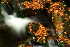 Free Autumn Stream In Giant Mountains Royalty Free Stock Image - 1006206