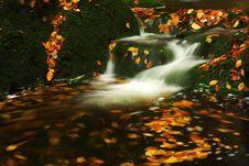 Free Autumn Stream In Giant Mountains Stock Photo - 1006210