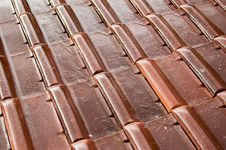 Wet Roofing Tiles Stock Photography