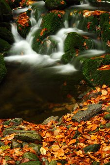 Free Autumn Stream In Giant Mountains Royalty Free Stock Photos - 1006378
