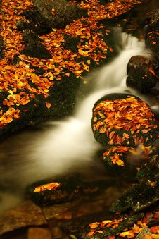 Free Autumn Stream In Giant Mountains Royalty Free Stock Photography - 1006397
