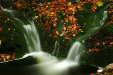 Free Autumn Stream In Giant Mountains Royalty Free Stock Images - 1006429