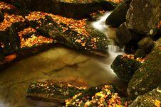 Free Autumn Stream In Giant Mountains Royalty Free Stock Photos - 1006538