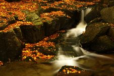 Free Autumn Stream In Giant Mountains Stock Images - 1006594