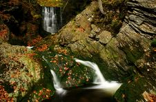 Free Autumn Stream In Giant Mountains Stock Images - 1006754