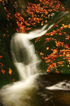Free Autumn Stream In Giant Mountains Stock Photography - 1006772