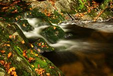 Free Autumn Stream In Giant Mountains Stock Images - 1006814