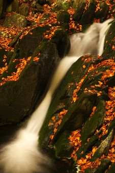Free Autumn Stream In Giant Mountains Stock Photo - 1009820