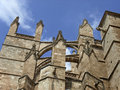 Free Palma Cathedral Royalty Free Stock Photos - 10007738