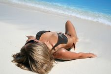Free Tropical Beach Royalty Free Stock Image - 10003676