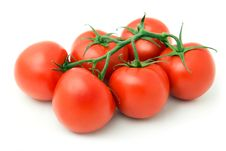 Free Six Fresh Tomatoes Stock Images - 10004254
