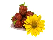 Free Strawbeeries Royalty Free Stock Image - 10004726