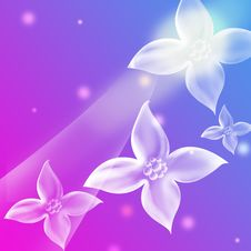 Free Flower Background Royalty Free Stock Image - 10009046