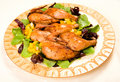 Free Cornish Hen Serving Platter Stock Photos - 10018683