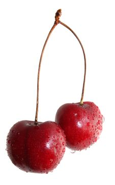 Free Sweet Cherry Stock Photography - 10010132
