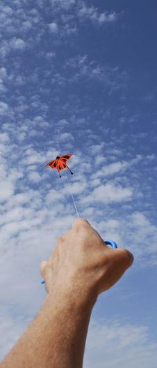 Free Sky Snake In Heaven Royalty Free Stock Photo - 10010505
