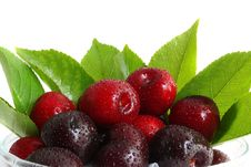 Free Sweet Cherry Stock Images - 10010694