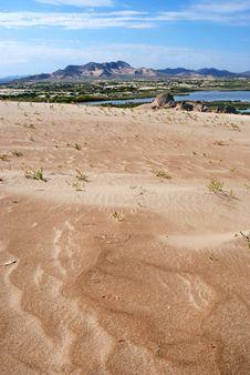Free Desert Oases Stock Images - 10011404