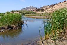Free Desert  Oasis Stock Images - 10011454