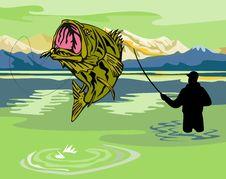 Free Fisherman Catching Bass Royalty Free Stock Photo - 10013905