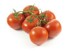 Free Tomatoes Royalty Free Stock Photos - 10015878