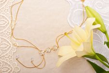 Free Chain And Lily Royalty Free Stock Photo - 10018725