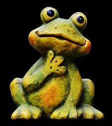 Free Ranidae, Amphibian, Frog, Tree Frog Stock Photo - 100195770