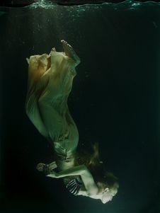 Free Underwater, Water, Organism, Marine Biology Royalty Free Stock Photos - 100196348