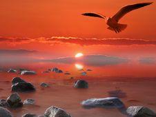Free Sky, Sunrise, Shore, Sea Stock Photos - 100198933