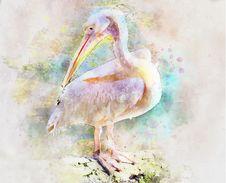 Free Beak, Fauna, Bird, Watercolor Paint Royalty Free Stock Photos - 100199048