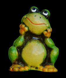 Free Ranidae, Frog, Tree Frog, Amphibian Royalty Free Stock Image - 100199096