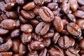 Free Fresh Coffee Bean Series 03 Stock Images - 10021704