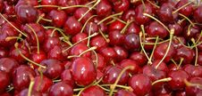 Many Red, Ripe Cherries Stock Photos