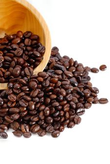 Free Fresh Coffee Bean Series 01 Stock Image - 10021751