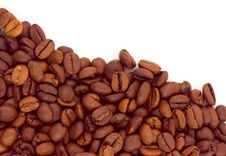 Free Coffee Stock Photo - 10023210