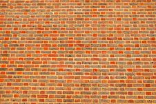 Free Fresh And Vivid Brick Wall Royalty Free Stock Photography - 10024787