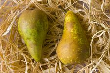 Free Two Pears Royalty Free Stock Photography - 10025447