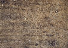 Free Earthy Texture Royalty Free Stock Images - 10025689