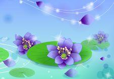 Free Lotus Royalty Free Stock Images - 10029589