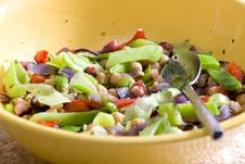 Free Warm Salad Royalty Free Stock Photo - 10029835