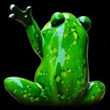Free Ranidae, Amphibian, Green, Frog Royalty Free Stock Image - 100245426