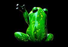 Free Amphibian, Frog, Tree Frog, Ranidae Stock Image - 100245471