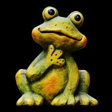 Free Ranidae, Amphibian, Toad, Frog Stock Images - 100250524