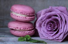 Free Macaroon, Pink, Sweetness, Magenta Stock Photo - 100252450