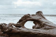 Free Sea, Rock, Coast, Shore Stock Photography - 100260122