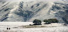 Free Snow View Of Tibetan Village At Shangri-la China Royalty Free Stock Photography - 10031047