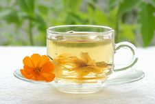 Free Morning Tea Royalty Free Stock Photos - 10031188