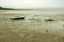 Free Low Tide Mud Royalty Free Stock Photography - 10035337