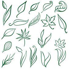 Set Of Natural Free Hand Design Elements Royalty Free Stock Images